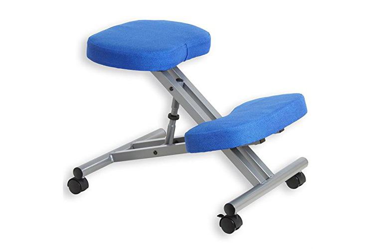 Idimex Robert aluminium/bleu chaise ergonomique